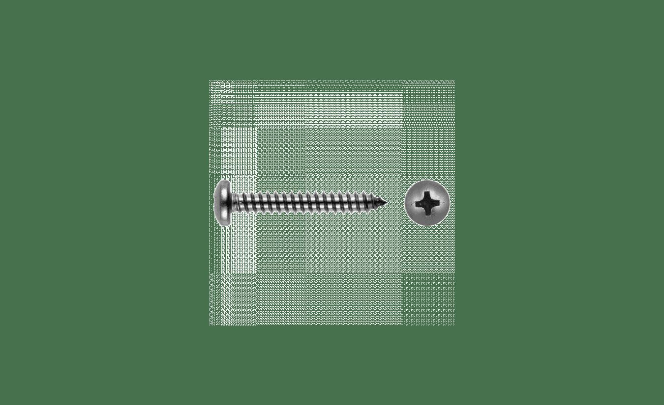 Zelftappers RVS cilinderkop 5,5x25 - 200 stuks